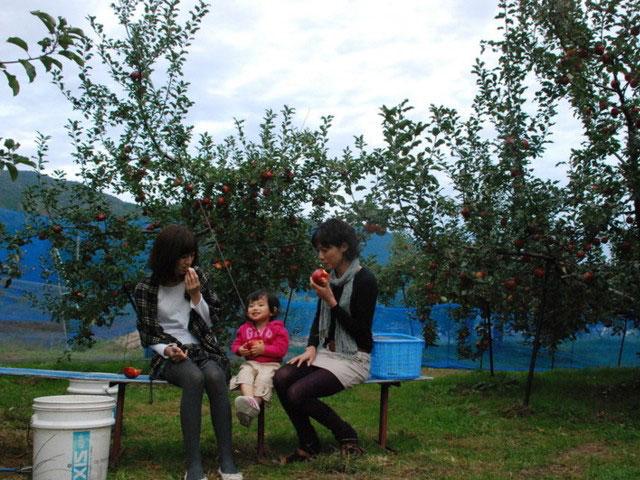 山上観光りんご園