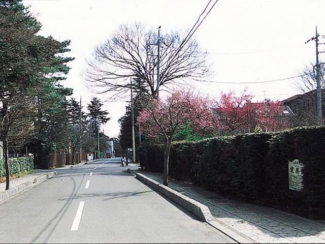 大宮盆栽村