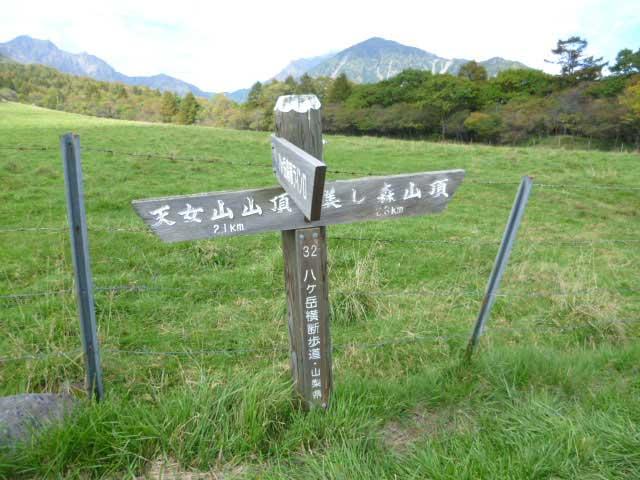 天女山・美し森ハイキングコース