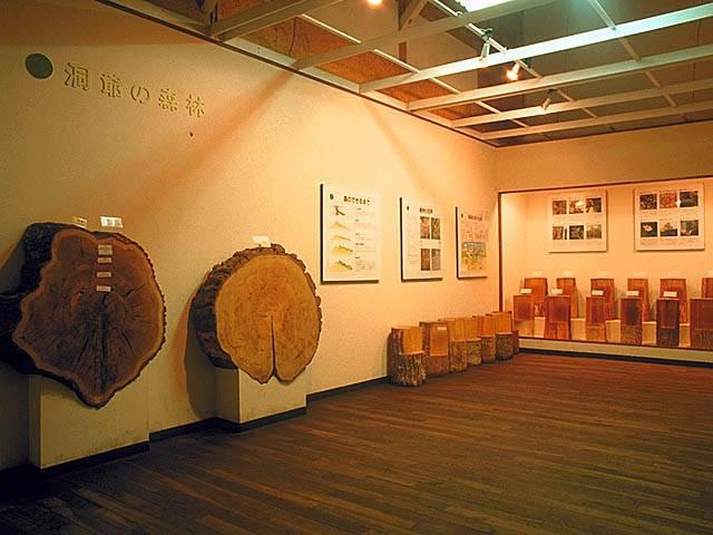 洞爺湖森林博物館