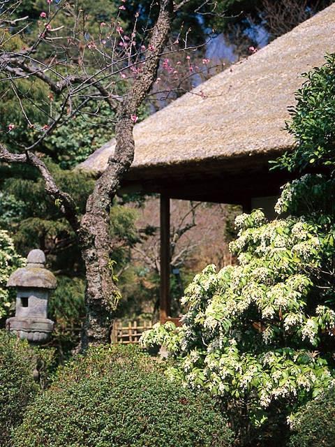 京王百草園