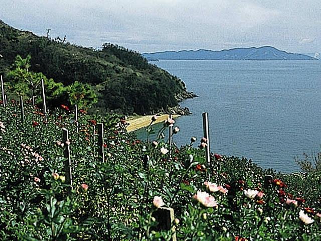 真鍋島ふるさと村