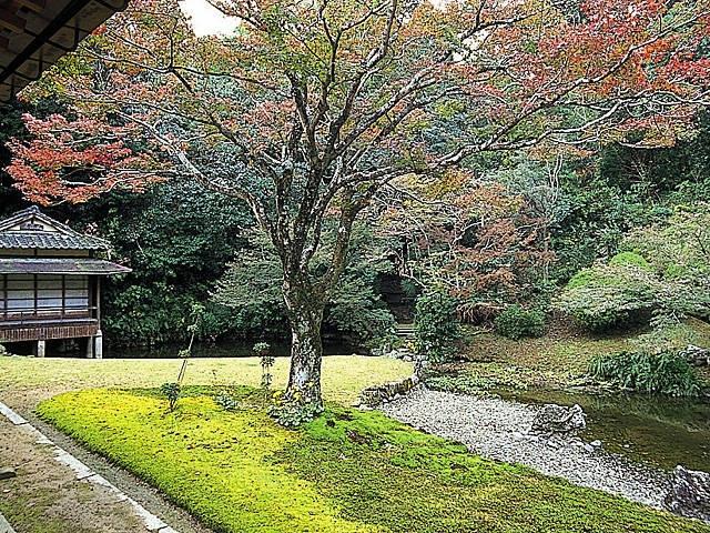 宗隣寺庭園(龍心庭)