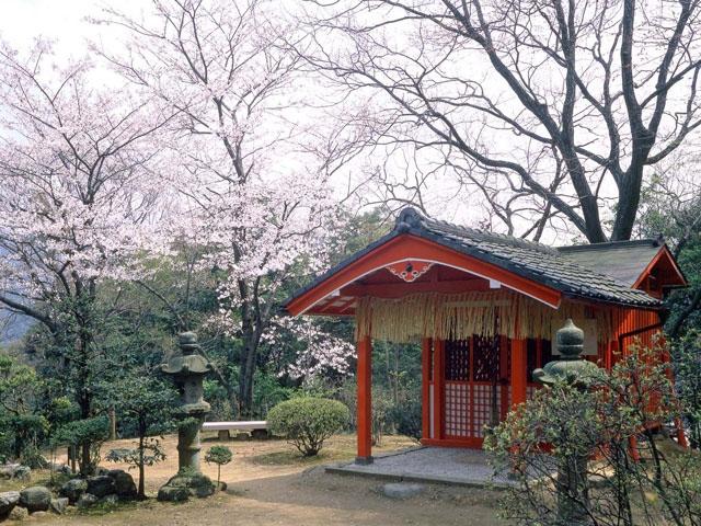 ウェスティン都ホテル京都 野鳥の森探鳥路