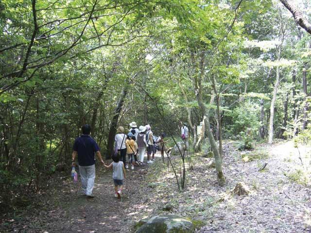 姫路市自然観察の森