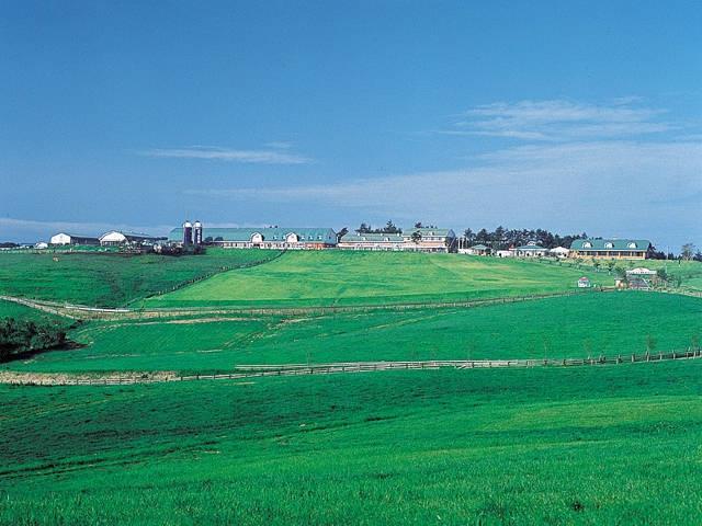 高千穂牧場