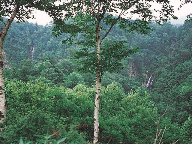 西吾妻スカイバレー 滝展望台