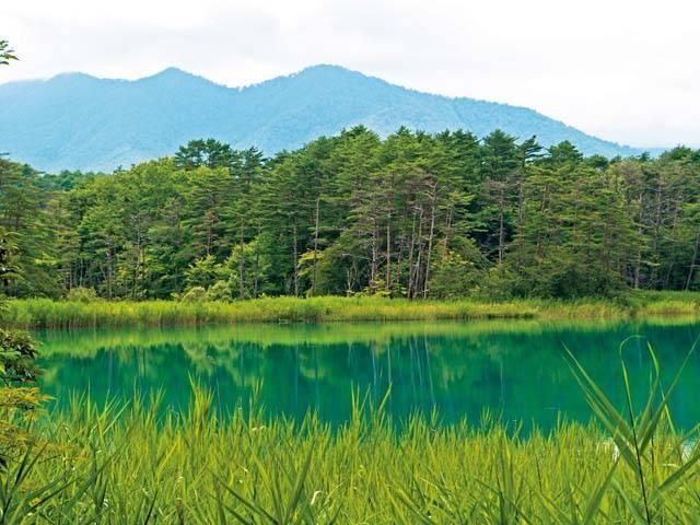 五色沼自然探勝路