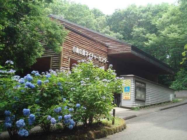 福島市小鳥の森