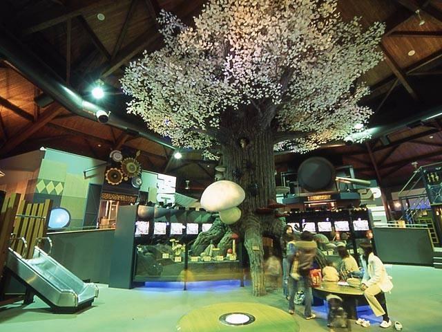 茨城県きのこ博士館